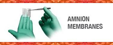Amnion Membranes