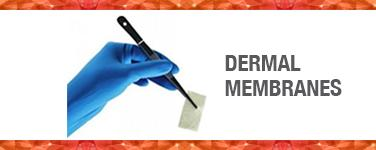 Dermal Membranes