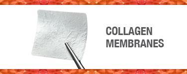 Collagen Membranes