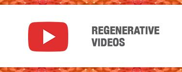 Regenerative Videos